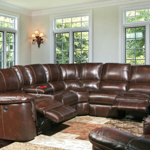 Pegasus Reclining Sectional Sofa Collection
