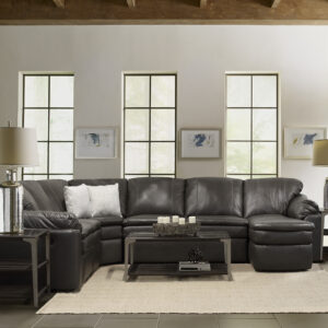 Seneca Reclining Sectional Sofa Collection